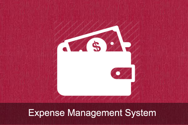 Expense management sytem